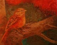 Pequeño nido nocturno  Técnica mixta sobre tela /  39,5 x 49 cm / 2014