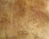 Cuero Tostado  Mixta / 90 x 109 cm / 2009