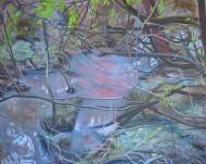 Sin  título Óleo sobre tela / 120 x 150 cm / 2015