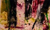 Sin Título / Díptico / Técnica Mixta sobre tela / 170 x 260 cm / 2019