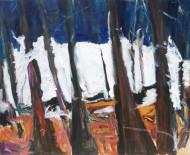 2004-54 Sin titulo / acrílico sobre tela / 110 x 140 cm /