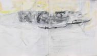 2015-16 Sin titulo / técnica mixta sobre tela / 160 x 280 cm /